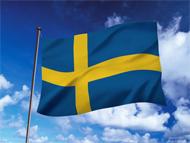 スウェーデンサウンディング試験とは